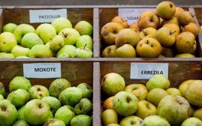 Los productores de sidra presentan el análisis de la cosecha de 2017 y anuncian la fiesta de la manzana